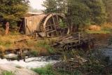 Ruiny tartaku w Chocinińskim Młynie- tak niewiele pozostało po jednym z najwspanialszych zabytków architektury przemysłowej